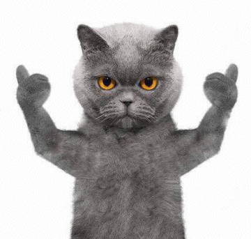 抖音蓝猫biubiu表情包图片